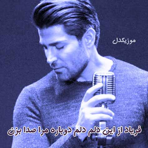 دانلود آهنگ فریاد از این دلم دلم دوباره مرا صدا بزن ( رضا ملک زاده فریاد )