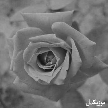 دانلود آهنگ وقتی که تیات مین تیات زل ایزنه / ای گل گرفتار تونم کاظم قادری کتکی
