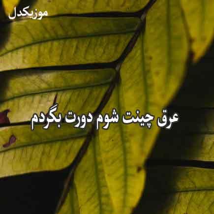 دانلود آهنگ عرق چینت شوم دورت بگردم محسن دولت