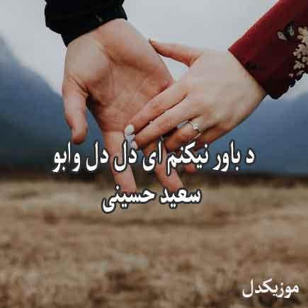 دانلود اهنگ د باور نیکنم ای دل دل وابو سعید حسینی