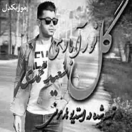 دانلود آهنگ دی یه گلی های من مالمون های سعید محمدی